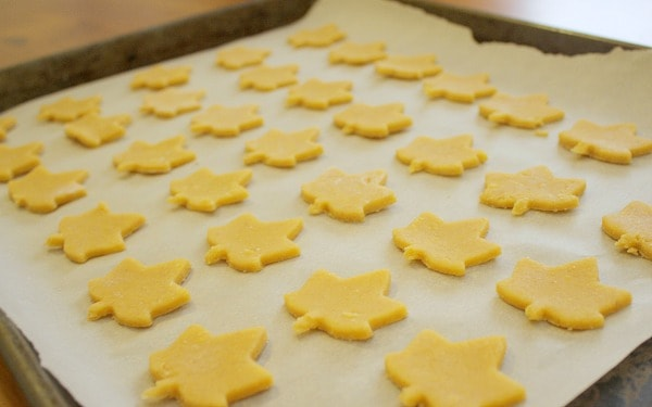 Cheese Snack Crackers Recipe~ Buggy and Buddy