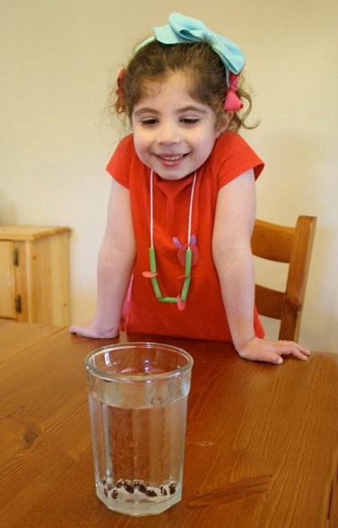 dancing raisins science activity for kids