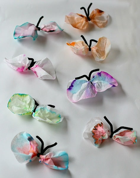 STEM chromatology butterflies craft