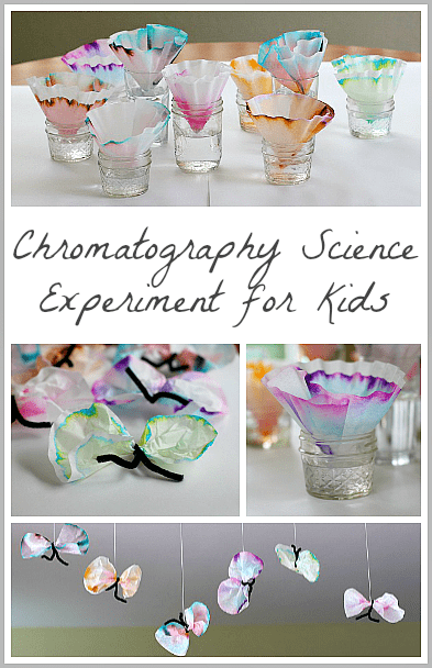 Science for Kids: Chromatography Butterfly Craft ~ Buggy and Buddy