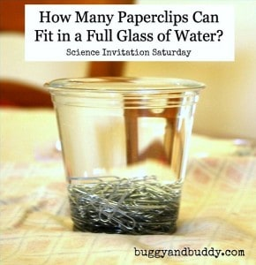 Science for Kids:  Exploring the Surface Tension of Water with Paperclips