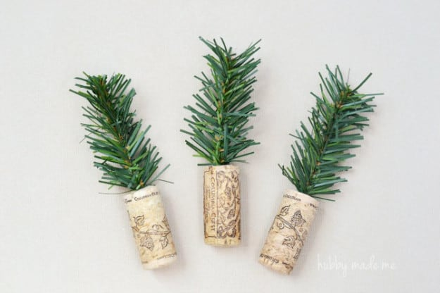 Cork-Trees+