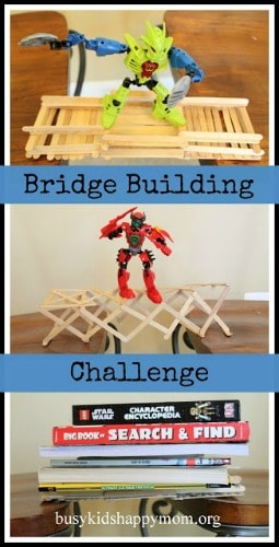 bridgechallenge