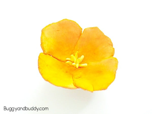 california poppy magnet- flower craft for kids