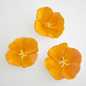 California Poppy Magnets