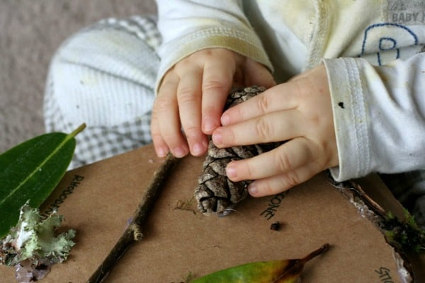 Nature Sensory Board~ Fun at Home with Kids