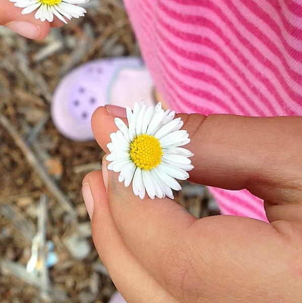 Finding Symmetry in Nature (Outdoor Activity for Kids)~ Buggy and Buddy