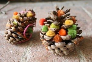 Fall Craft for Kids: Decorate Pinecones