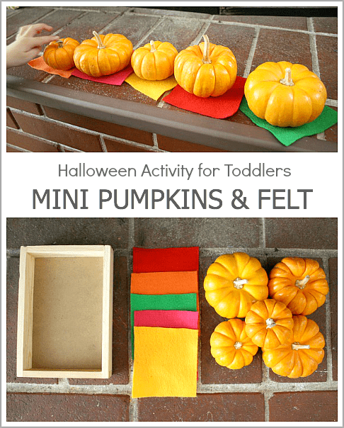 Open-Ended Halloween Activity for Toddlers Using Mini Pumpkins and Felt~ BuggyandBuddy.com