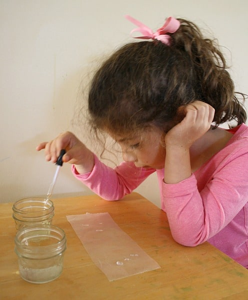Science Experiments for Kids: Exploring the Surface Tension of Water