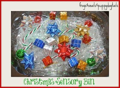 Christmas Sensory Bin~ Frogs and Snails and Puppy Dog Tails