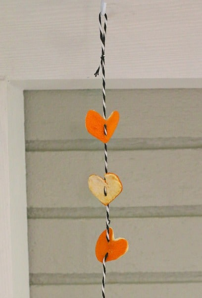Vertical Heart Garland from Orange Peels