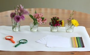 Flower Exploration Center: Sensory, Science, and Art for Spring!