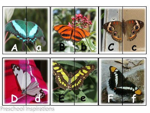 Butterfly Letter Matching Cards