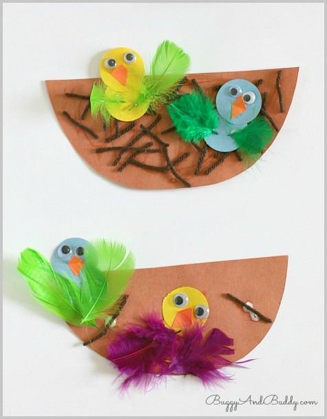 Bird and Nest Craft