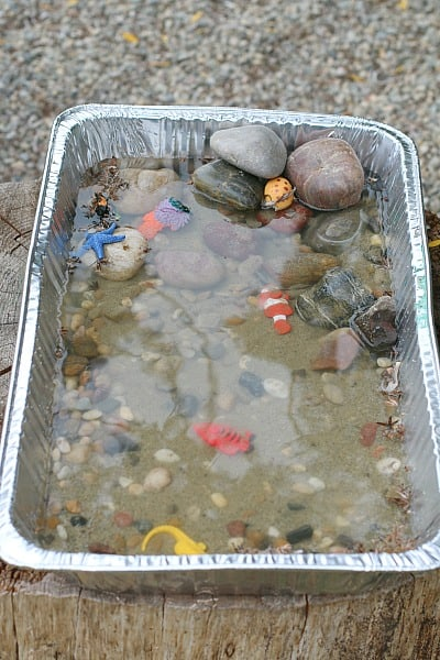 Science for kids: Learning about the tides