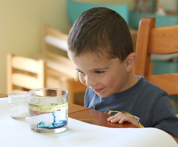 Cool Science Experiments: Exploring the Density of Liquids- Buggy and Buddy