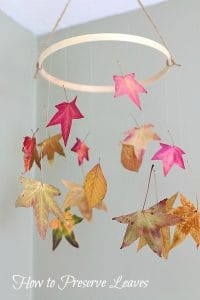 How to Preserve Leaves: Fun Fall Craft for Kids