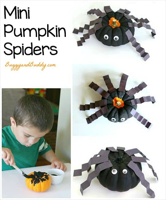 Halloween Crafts for Kids: Spider Art Project using mini pumpkins! Fun fall craft for preschool, kindergarten, and on up! ~ BuggyandBuddy.com