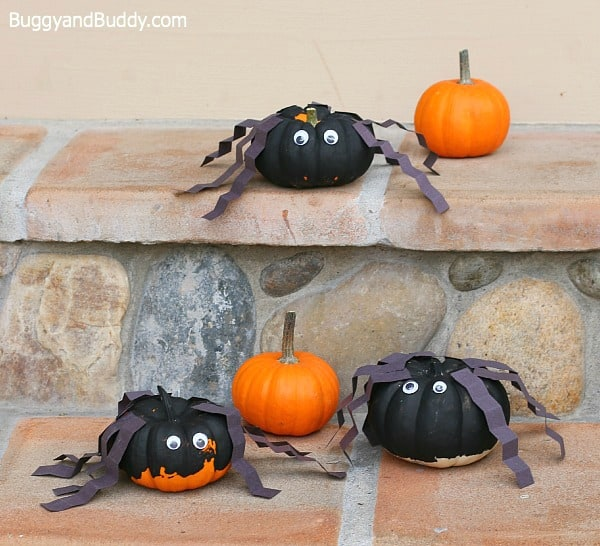 Perfect Halloween craft for preschoolers! (Spiders made from mini pumpkins)~ BuggyandBuddy.com