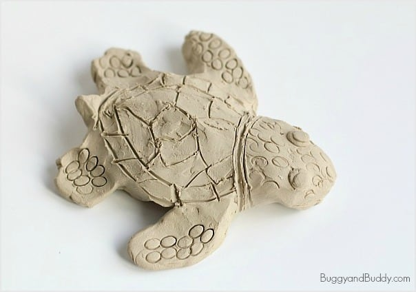 Ocean Animal Art Project for Kids: Make Sea Turtles Using Clay
