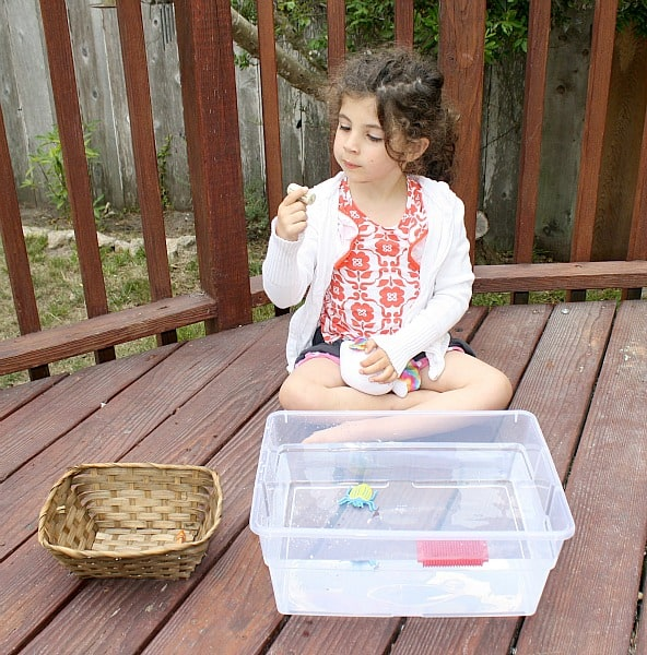 sink or float science activity for kids w/ free printable