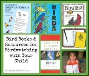 birdwatching books for kids and adults