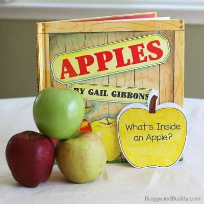 Apple Science for Kids: Exploring the Inside of an Apple