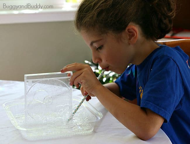 bubble science for kids