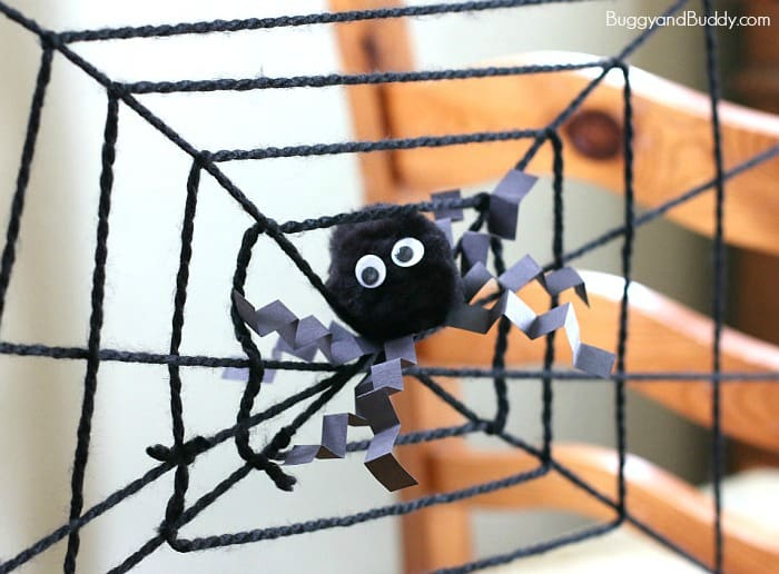 spider web science experiment for kids