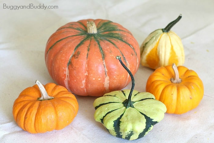 Fall Art Project for Kids Using Pumpkins