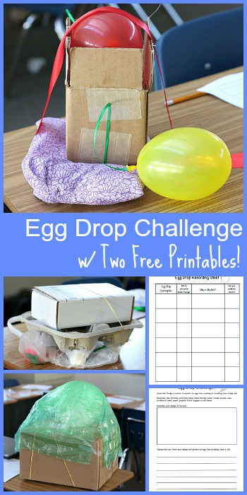 Egg Drop Challenge with 2 FREE Printable Recording Sheets- Fun STEM activity for kids of all ages! ~ BuggyandBuddy.com