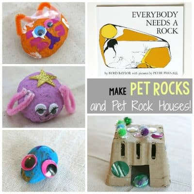 Making Pet Rocks and Pet Rock Houses