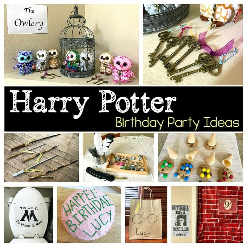harry potter birthday part ideas for kids
