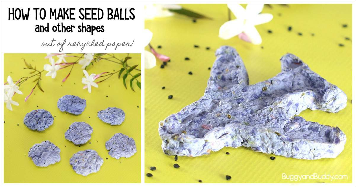 How To Make Seed Balls Science And Craft For Kids Based On The Book The