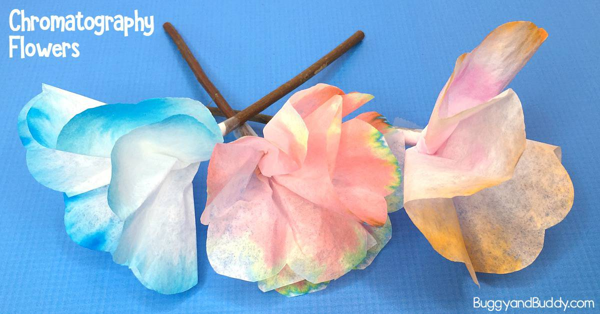 STEAM for Kids: Explore chromatography with coffee filters and make them into coffee filter flower craft