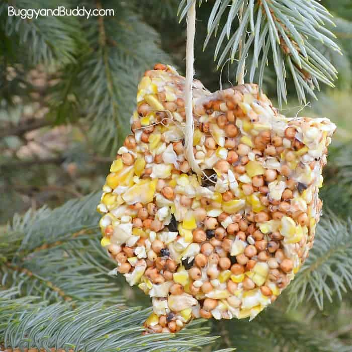 diy birdseed ornaments craft for kids