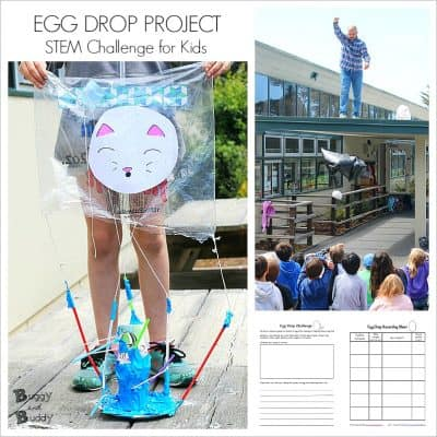 Egg Drop Project  with Printable Recording Sheets
