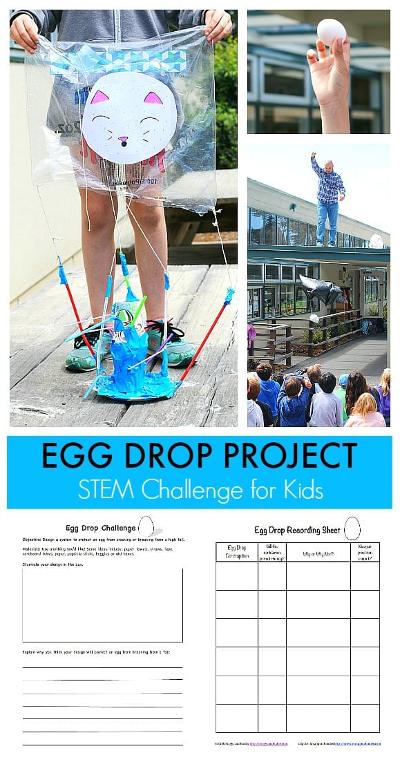 STEM Challenge for Kid: Egg Drop Project