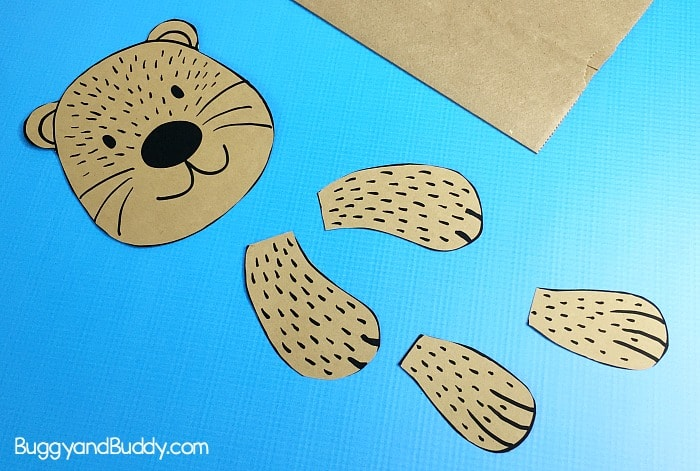 cut out the sea otter pieces for your puppet