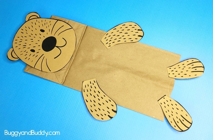 glue the pieces onto your sea otter puppet