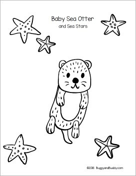 free printable baby sea otter template and coloring page