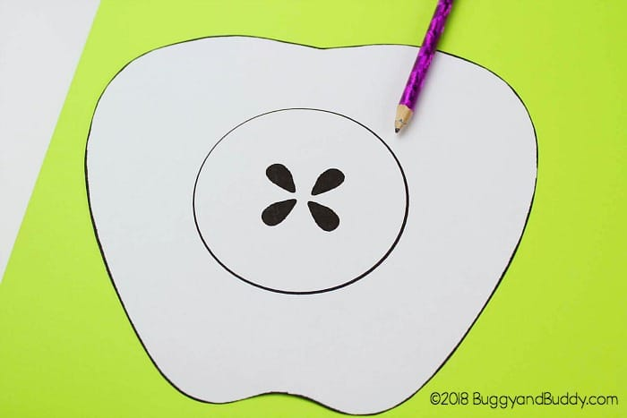 trace the apple template onto cardstock